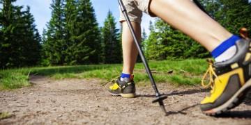 Nordic Walking img